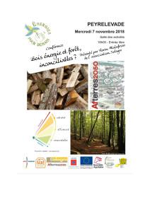 Bois energie et forêt